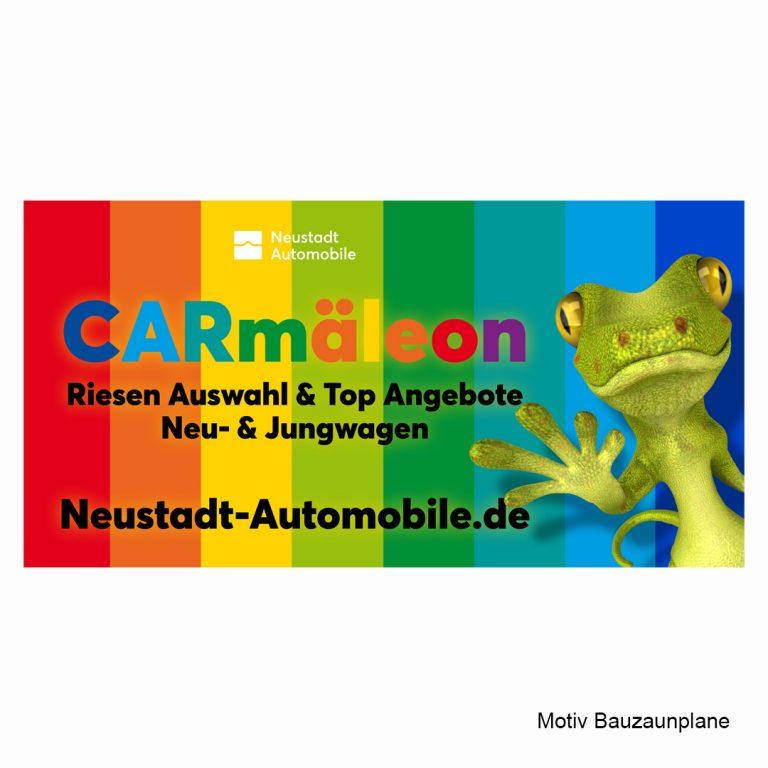 Agentur-S49_Neustadt-Automobile-CARmaeleon_03