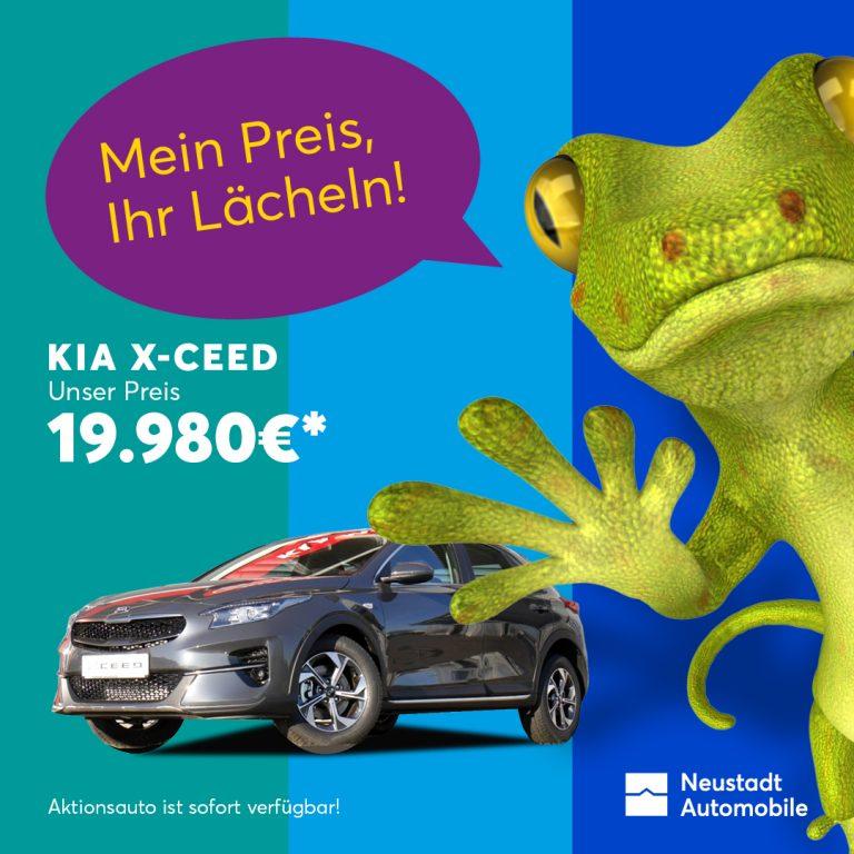 Neustadt_Automobile_Carmaeleon_04