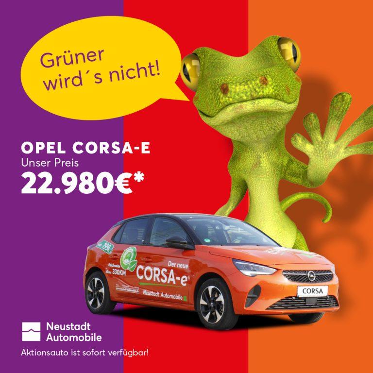 Neustadt_Automobile_Carmaeleon_05